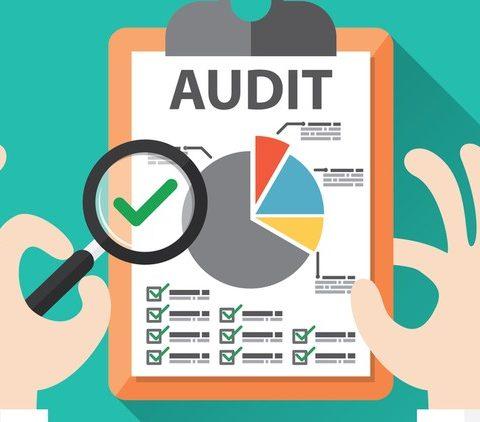 Tahapan-Tahapan Audit Informasi dan Pengetahuan secara Komputerisasi