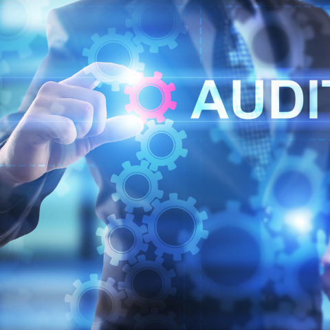 Berkenalan Dengan Sistem Audit Pengetahuan Dan Peranannya dalam Sebuah Organisasi Dan Perusahaan